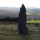 Standing Stone,,Nire Valley,Co. Waterford,Ireland. by Pat Duggan