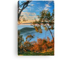 Kissing Point Morning Glow Canvas Print