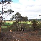 Moondyne Park, Western Australia by zoolou