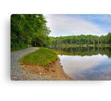 Trout Lake Canvas Print