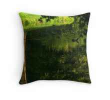 Coot's upside down water world Throw Pillow