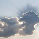 Mushroom cloud by TaraHG