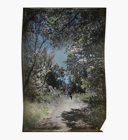 This Empty Path Poster