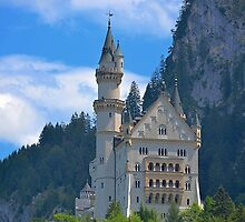 Neuschwanstein Castle  from the Road by Imagery