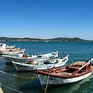 Boats by Maria1606