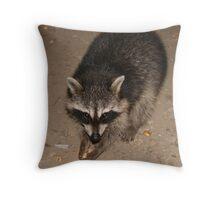 Thanks for the Pistachio Throw Pillow