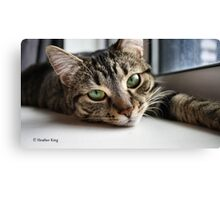Mystify Canvas Print