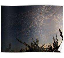 Dewdrop Cobweb Poster