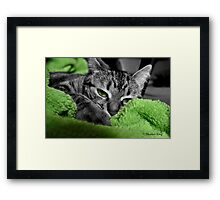 Greenie Framed Print