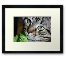The Light In My Little Girl's Eyes Framed Print