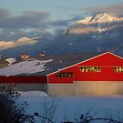 Fraser Valley Farming by Sheri Bawtinheimer