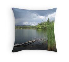 Lynx Lake in Prescott, AZ Throw Pillow