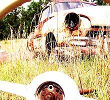 thur the wheel by bulldawgdude