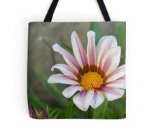 aster in garden Tote Bag