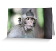 Wise Monkey Greeting Card