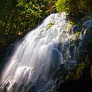 Ramona Falls by Leasha Hooker