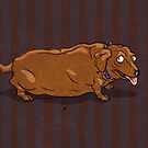 fat dachshund by Richard Morden