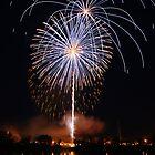 Petunia Fest Fireworks by Richard Williams