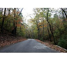 Fall in Woodford Country Photographic Print