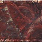 Phoenix Raven by Leila A. Fortier