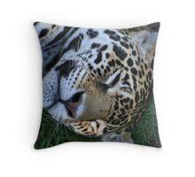 Sleeping Jaguar Throw Pillow