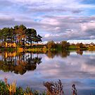 Reflections on the lake . by Irene  Burdell