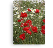 Textured Poppies Canvas Print