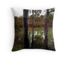 DMC-TZ7 - Dwellingup Bushland, Western Australia. Throw Pillow