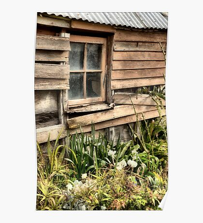 Garden Shed Poster