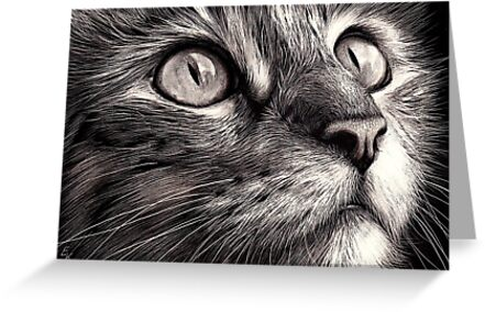 Scratchboard art for kids - photo#6