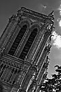 Notre Dame de Paris, France by EblePhilippe