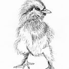 Sweet Chick by Mitch Adams