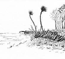Coastal Breeze by Debbie  Adams