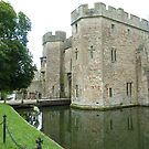 Palace Gatehouse and Moat by Meladana