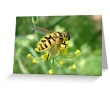 Bee on Fennel Greeting Card