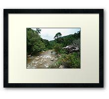 The Chiang Mai Jungle Framed Print