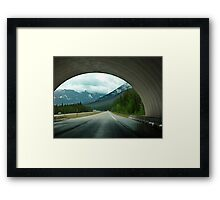 Wildlife Overpass Framed Print