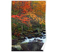 AUTUMN,TREMONT AREA Poster