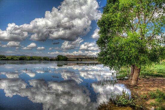 Off Shore Sky by Bob Larson