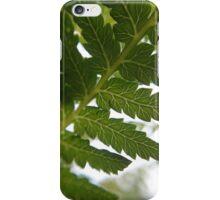 Tasmanian tree fern detail iPhone Case/Skin