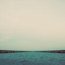 Stuck in Tide by Tim Mannle