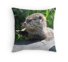 Loyal Subjects, I give you.........The Power of the Paw!!! Throw Pillow