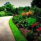 Garden Path by Lea  Weikert
