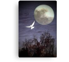 Peace and Serenity Canvas Print