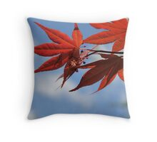 Red and Sky Throw Pillow