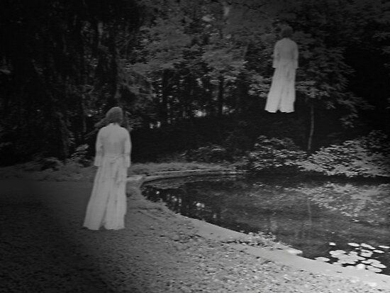 Doppelganger At The Night Pond by Lori Siervogel