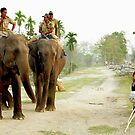 Elephant patrol by John Mitchell