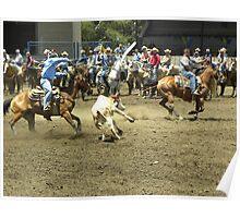 Roping Cowboys Poster