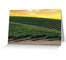 Golden Skies Over Napa Valley (California) Greeting Card