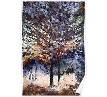 Autumn Cedars Poster